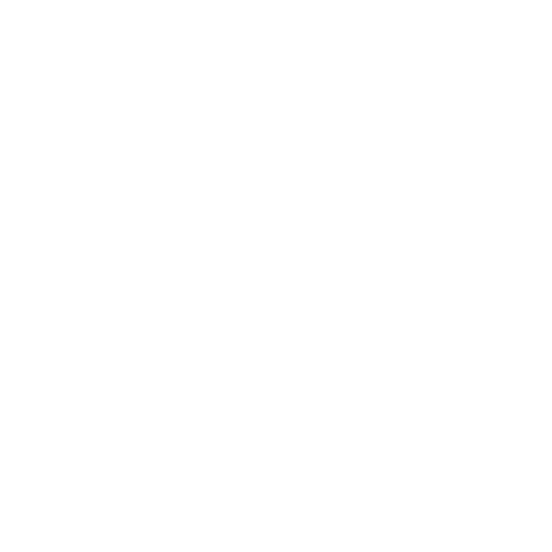 icon_health.png